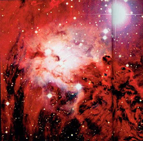 red fox fur nebula - photo #18